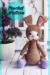 Awesome Bunny Mia Amigurumi Crochet Pattern